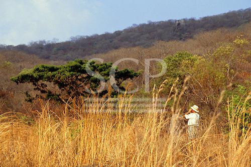 Lupoli, Tanzania. Tourist on safari looking through binoculars at wildlife.