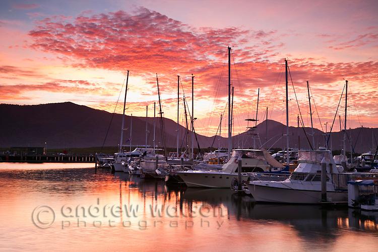 Marlin Marina at dawn.  Cairns, Queensland, Australia