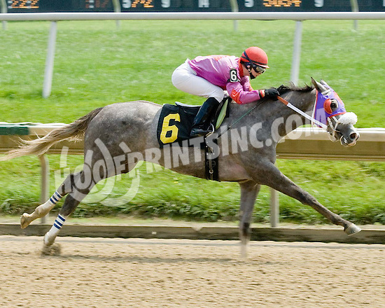 Seek Silver winning at Delaware Park on 8/19/09