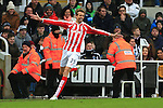 Stoke's Peter Crouch celebrates scoring his sides equalising goal - Newcastle United vs. Stoke City - Barclay's Premier League - St James' Park - Newcastle - 08/02/2015 Pic Philip Oldham/Sportimage