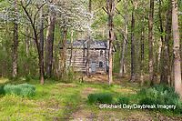 63895-15809 63895-158.02 Cabin at Log Cabin Village in spring Kinmundy IL