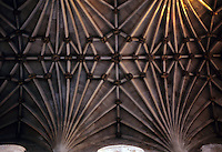 Norwich: Norwich Cathedral--ceiling detail.