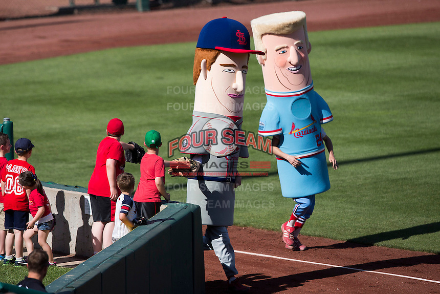 Two mascots depicting St. Louis Cardinals legends Red Schoendienst, left, and Whitey Herzog, right, run along the warning track during a game between the Springfield Cardinals and the Tulsa Drillers at Hammons Field on May 4, 2014 in Springfield, Missouri. (David Welker/Four Seam Images)