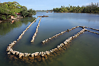 Fish trap made from stones at the Fish Park in the lagoon at Maeva village, on Huahine-Nui on the island of Huahine, in the Leeward Islands, part of the Society Islands, in French Polynesia. Created at the time of the great chiefdoms, restored in the 1880s and still in use today, the traps catch fish between the tides and they are then captured with large nets. Some fish are kept and reared in the park to provide further food sources, in a form of aquaculture. Picture by Manuel Cohen