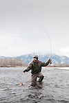 A fly fisherman brings a cutthroat trout to hand during a winter day on the South Fork of the Snake River, Idaho.