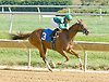 Sing It Again winning at Delaware Park on 10/1/12
