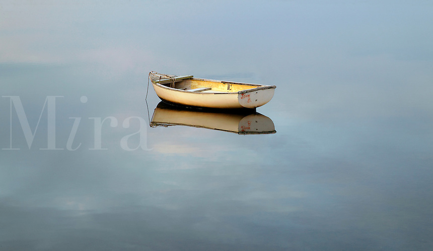 Solitary rowboat, Hamptons, New York