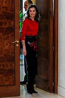 JAN 14 Queen Letizia attends Royal audiences