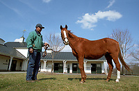 GENUINE RISK, at age 28, Newstead Farm, Upperville, VA, March 2005.  With farm manager Buck Moore.