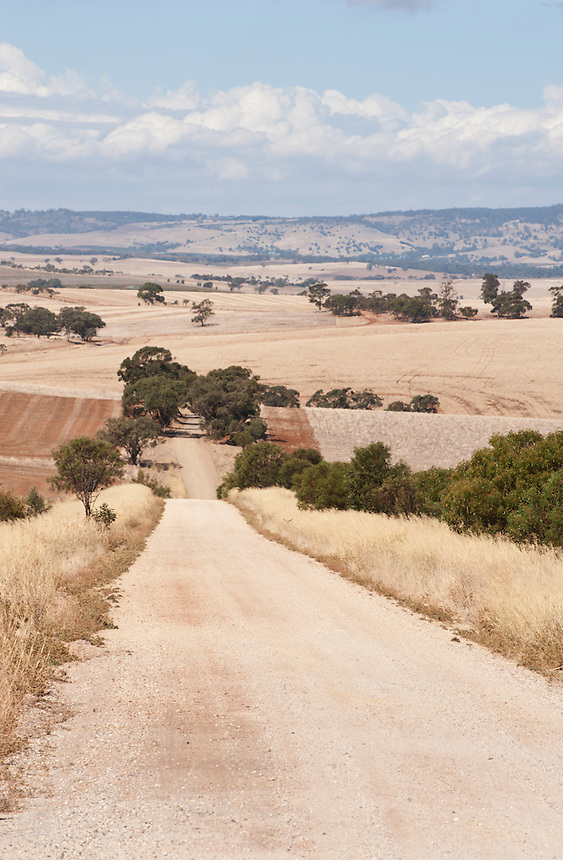 A gravel road vanishes into the distance near Adelaide, South Australia.