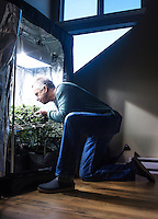 Jason Thomas, with Avalon Realty Advisors at his home in Aurora, Colorado, Friday, December 19, 2014. Thomas is a marijuana advocate who grows plants at home.<br /> <br /> Photo by Matt Nager