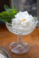 A fresh rose displayed in an etched glass makes a beautiful adornment to the table in the bathroom