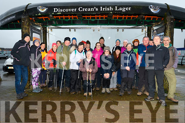 A group of walkers at the Dingle Walking Festival over the weekend.