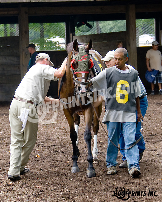 Artful Lady at Delaware Park on 8/21/14