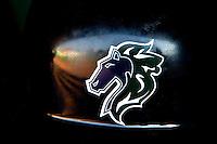 Charlotte Knights baseball logo.