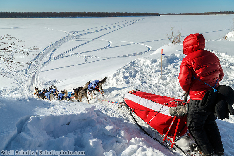 Travis Beals team drops down the bank onto the Koyukuk River in the afternoon after leaving the Huslia checkpoint on Saturday  March 14, 2015 during Iditarod 2015.  <br /> <br /> (C) Jeff Schultz/SchultzPhoto.com - ALL RIGHTS RESERVED<br />  DUPLICATION  PROHIBITED  WITHOUT  PERMISSION