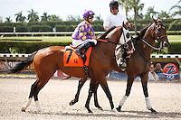 Fort Loudon on post parade for The Carry Back Stakes (G3), Calder Race Course, Miami Gardens Florida. 07-07-2012.  Arron Haggart/Eclipse Sportswire.