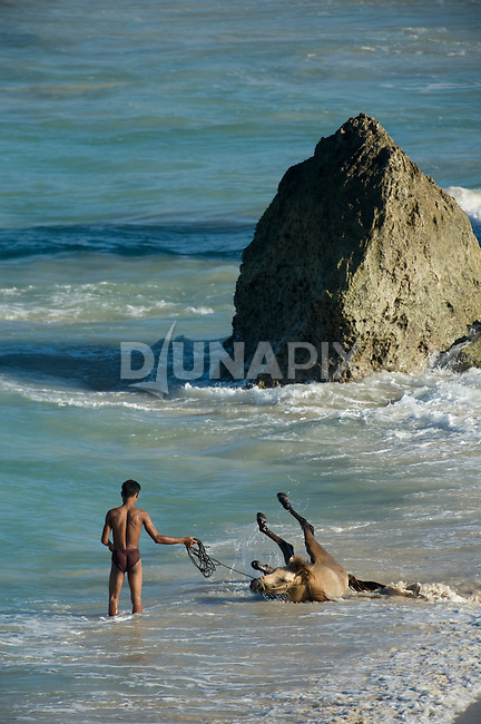 A boy and his horse enjoy a midday cool-down in the Sumba surf