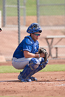 Kansas City Royals catcher Chase Vallot (3) during an Instructional League game against the San Francisco Giants at the Giants Training Complex on October 17, 2017 in Scottsdale, Arizona. (Zachary Lucy/Four Seam Images)