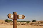 Israel, Negev, Nitzana Farm