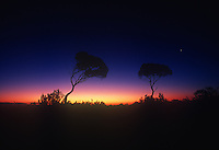 Amazing atmosphere the twilight in the Outback of Australia, Central Australia