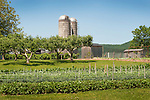 Nippenose Valley, Lycoming County, PA. Vegetable garden and farmscape with silos.