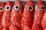 Bright eyes of red fish at Tsukiji Fish Market Tokyo Japan
