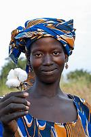 MALI , Bougouni , women harvest fair trade organic cotton / MALI , Bougouni, Fair trade und Biobaumwolle Projekt - Baumwollernte Frau Minata Samaké 31 Jahre aus Dorf Faragouaran