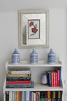 Three blue and white vintage style pharmaceutical jars displayed on a bookcase