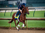 LOUISVILLE, KENTUCKY - MAY 02: Plus Que Parfait prepares for the Kentucky Derby at Churchill Downs in Louisville, Kentucky on May 01, 2019. Evers/Eclipse Sportswire/CSM