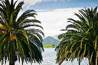 Picton - Marlborough Sounds , New Zealand