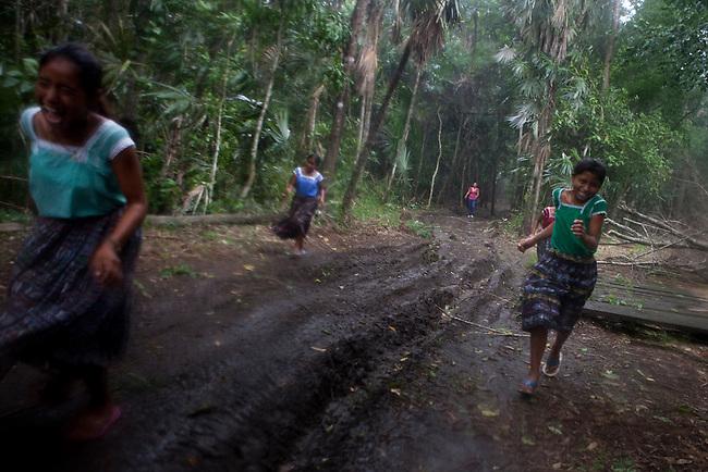 "Guatemala, Mayan Biosphere, Peten, Scarlet Macaws, WCS run an environmental education program in the Community ""Paso Caballos"" inside the Mayan Biosphere Reserve."