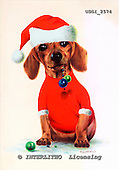GIORDANO, CHRISTMAS ANIMALS, WEIHNACHTEN TIERE, NAVIDAD ANIMALES, paintings+++++,USGI2574,#XA# dogs,puppies