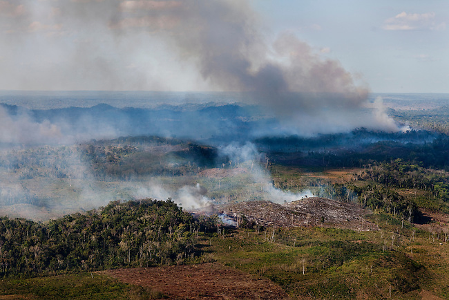 """Overflight over Mayan Biosphere Reserve, Fires and uncontrolled logging is big threat for the Reserve. """"Laguna del Tigre"""", the western part of the park the Reserve is about to disappear."""