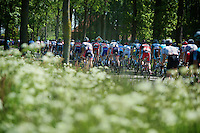 Tour of Belgium 2012.stage 03.Knokke-Heist - Beveren (173,5 km).