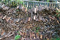 Wood pile at the farm in Poland. Zawady Central Poland