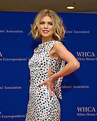 Actresss AnnaLynne McCord arrives for the 2016 White House Correspondents Association Annual Dinner at the Washington Hilton Hotel on Saturday, April 30, 2016.<br /> Credit: Ron Sachs / CNP<br /> (RESTRICTION: NO New York or New Jersey Newspapers or newspapers within a 75 mile radius of New York City)