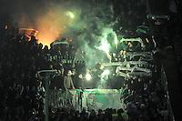 FUSSBALL   1. BUNDESLIGA  SAISON 2011/2012   18. Spieltag 1. FC Kaiserslautern - SV Werder Bremen        21.01.2012 Werder Bremen Fankurve mit einem Bengalischen Feuer