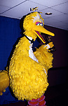 Big Bird attends the Daytime Emmy Awards at the Mariott Marquis Hotel on May 25, 1994 in New York City.