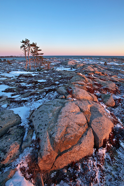 Granite rocks in the sub-alpine heath found on Little Moose Island in Acadia National Park, Maine, USA