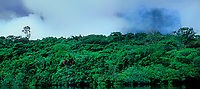 940000016 panoramic view -  tropical rainforest grows right to the edge of the carrao river with auyan tepui the home of angel falls on a cloudy day along the carrao river in canaima national park which protects the lost world in venezuela