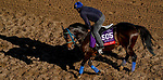 October 29, 2019 : Breeders' Cup Sprint entrant Imperial Hint, trained by Luis Carvajal Jr., exercises in preparation for the Breeders' Cup World Championships at Santa Anita Park in Arcadia, California on October 29, 2019. John Voorhees/Eclipse Sportswire/Breeders' Cup/CSM
