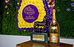 November 3, 2018 : Champions Terrace on Breeders Cup World Championships Saturday at Churchill Downs on November 3, 2018 in Louisville, Kentucky. Ryan Denver/Eclipse Sportswire/CSM