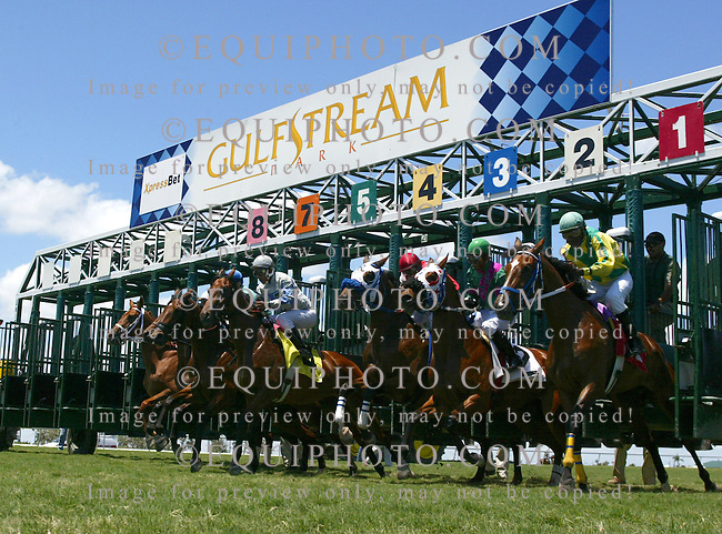 Thoroughbred Action at Gulfstream Park in Hallandale Beach, Florida.