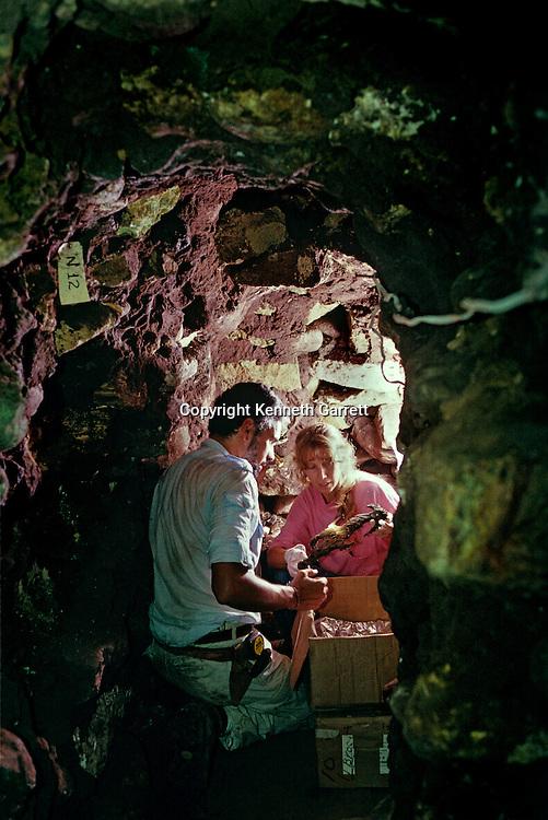 Copan; Honduras; Maya; Ricardo Agurcia, Rosalilla Temple, Eccentric Flint, offering, Temple dedication, Barbara Fash