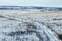 A team runs down a mining road on the way from Cripple towards the Ruby checkpoint on Friday March 11 during Iditarod 2016.  Alaska.    <br /> <br /> Photo by Jeff Schultz (C) 2016  ALL RIGHTS RESERVED