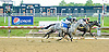 Adam's Nay winning at Delaware Park on 5/23/12