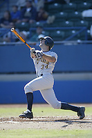 California Golden Bears 2003