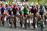 Green Jersey Peter Sagan (SVK) Bora-Hansgrohe in the thick of the bunch during Stage 15 of the 2019 Tour de France running 185km from Limoux to Foix Prat d'Albis, France. 20th July 2019.<br /> Picture: ASO/Alex Broadway | Cyclefile<br /> All photos usage must carry mandatory copyright credit (© Cyclefile | ASO/Alex Broadway)