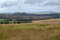 Upland farmland in the Scottish Borders <br /> &copy;Tim Scrivener Photographer 07850 303986<br />      ....Covering Agriculture In The UK....